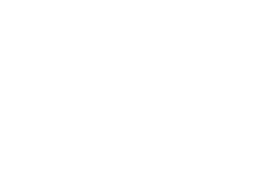 Smart Mobile Labs logo